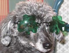 glasses28.jpg